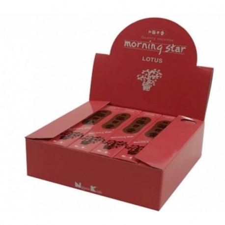 Wierook Morning Star Lotus